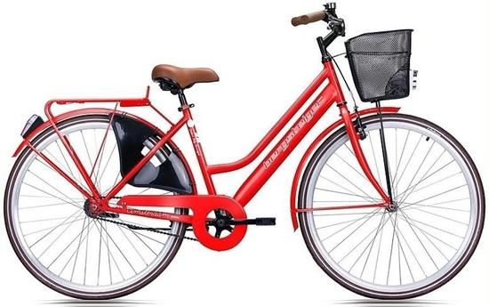 Picture of Bergsteiger Citybike Amsterdam