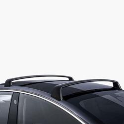 תמונה של דגם 3 גגון לרכב